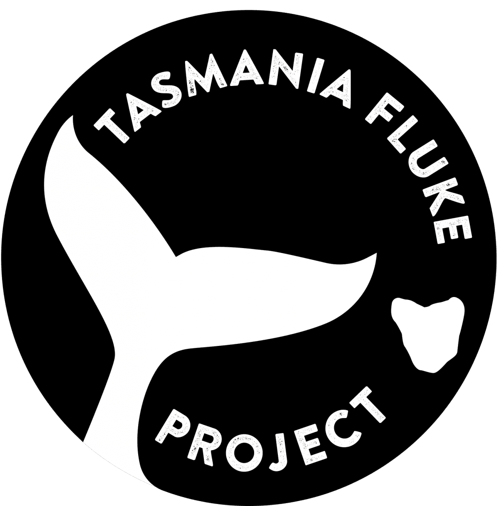 The logo of the Tasmania Fluke Project
